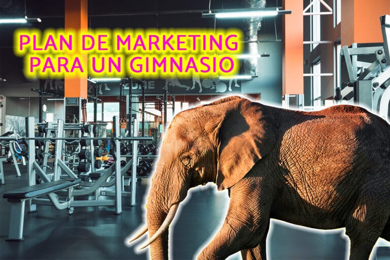 plan de marketing para un gimnasio